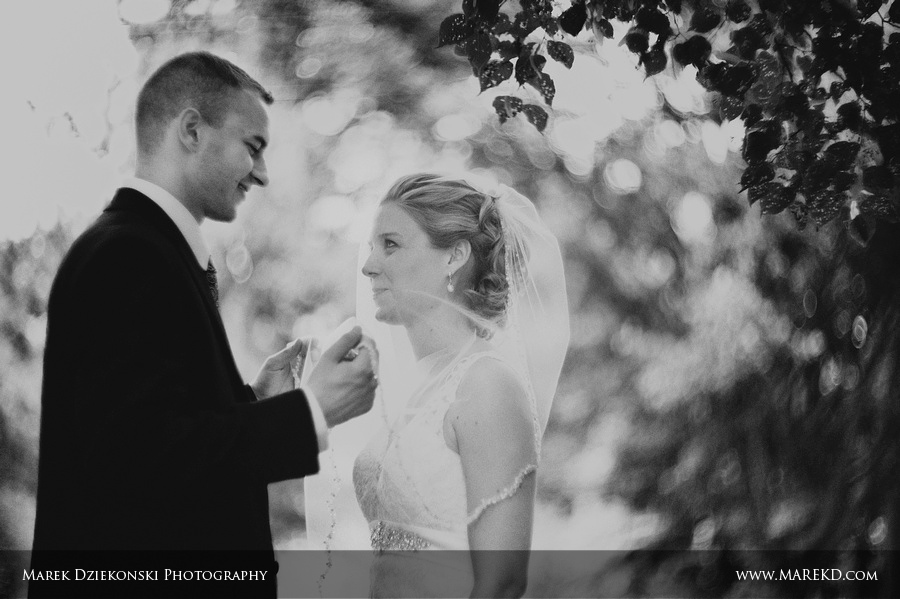 Owosso wedding gould house footbridge curwood castle photographer23 Katie and Ryan are Married! Owosso, MI