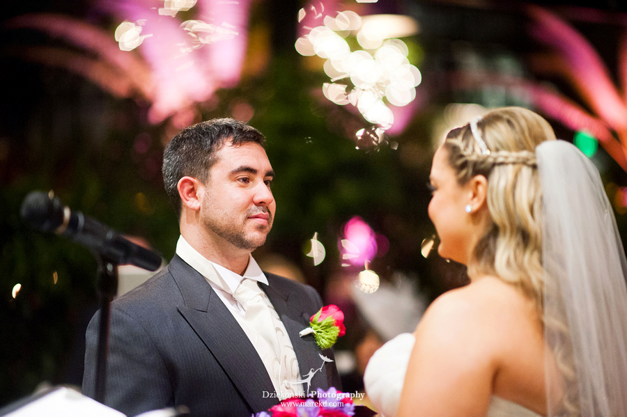 Amanda Leigh wedding planterra conservatory west bloomfield michigan photographer exotic greenhouse ceremony25 Amanda and Leighs Winter Wedding at Planterra Conservatory in West Bloomfield, Michigan