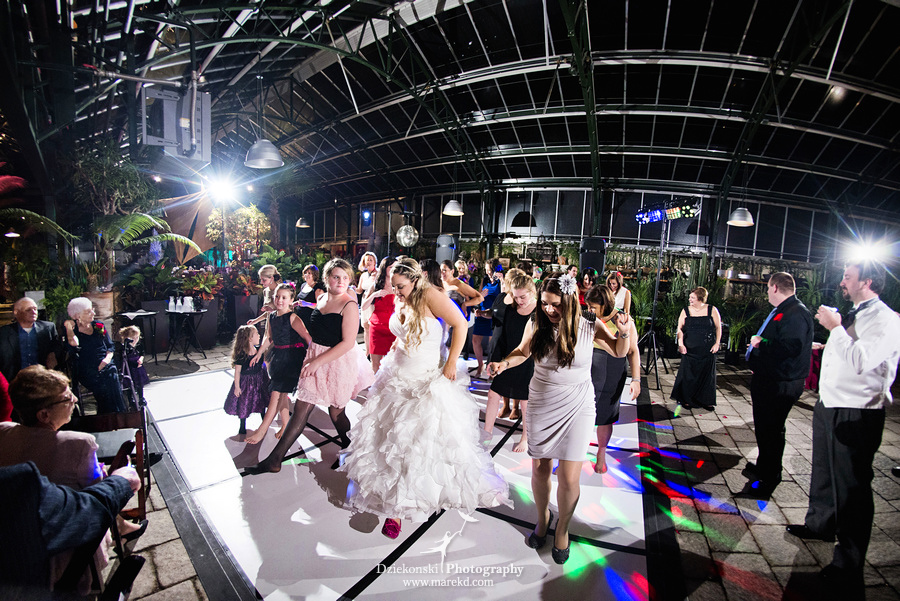 Amanda Leigh wedding planterra conservatory west bloomfield michigan photographer exotic greenhouse ceremony53 Amanda and Leighs Winter Wedding at Planterra Conservatory in West Bloomfield, Michigan