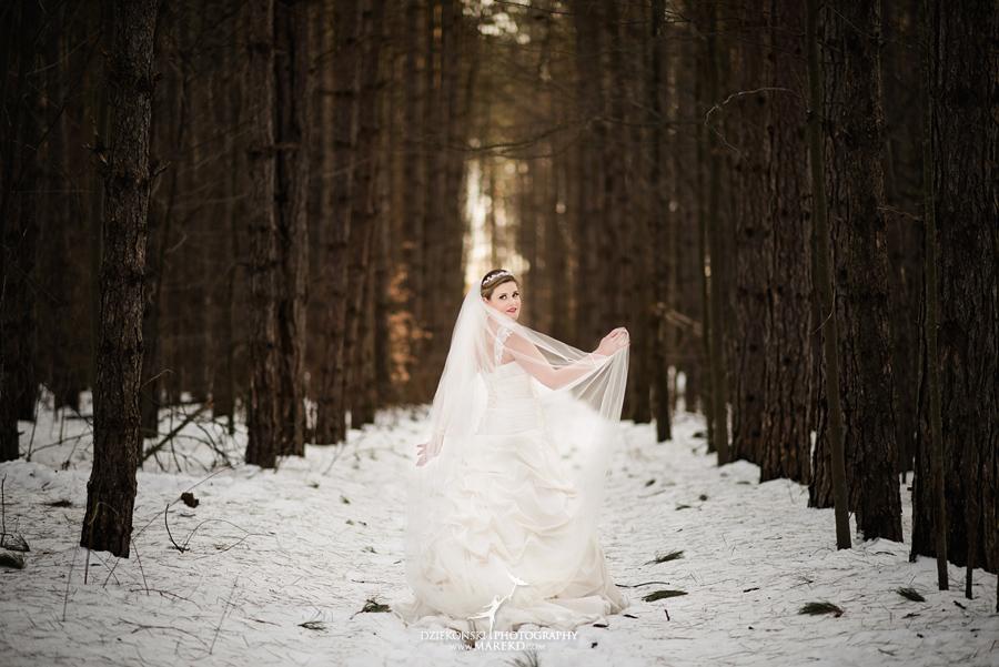 Wedding Dresses Lansing Mi 50 Popular  tiffany josh rock