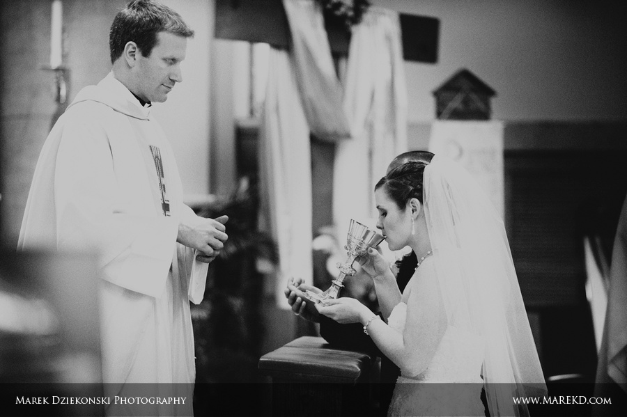 Tara Joe Flint MI Wedding Northbank Center221 - Tara and Joe are Married! | Flint, MI Wedding