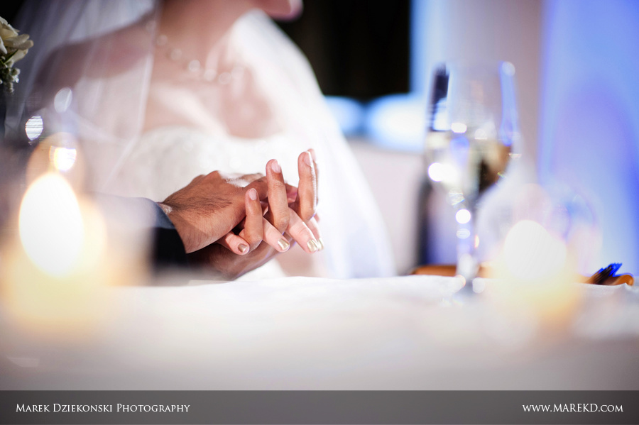 Tara Joe Flint MI Wedding Northbank Center48 - Tara and Joe are Married! | Flint, MI Wedding