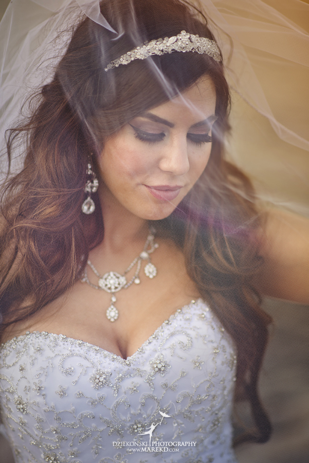 Lindsay-Daniel-metro-detroit-infinity-ovation-water-wedding-ceremony-reception-cruise-michigan12