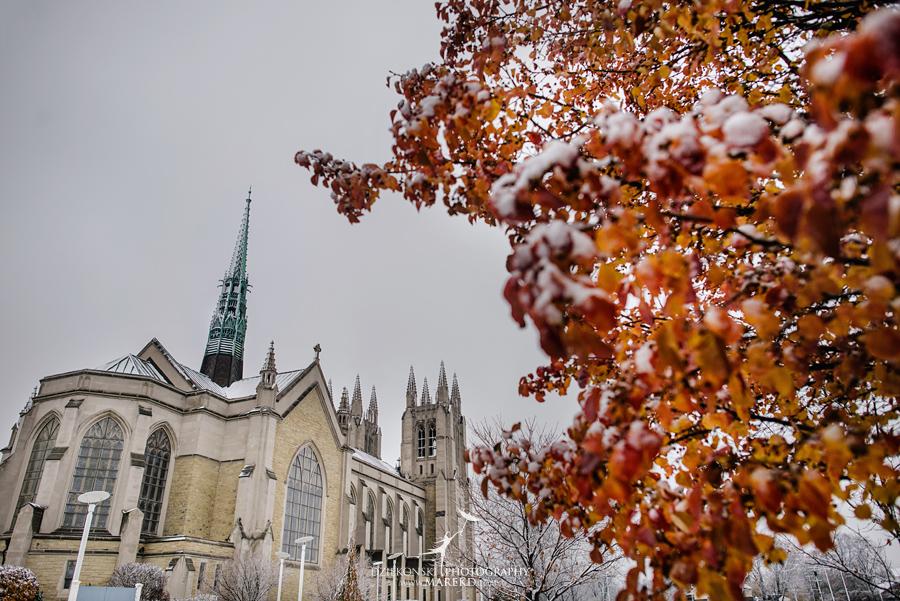 Okezie-LeeAnn-wedding-colony-club-detroit-downtown-mchigan-winter-snow-storm-blessed-sacrament-cathedral-catholic-church14