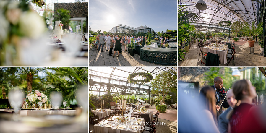 Planterra-samantha-eric-wedding-eremony-reception-greenhouse-botanical-ideas-pictures-photos-photographer-detroit-bloomfield43