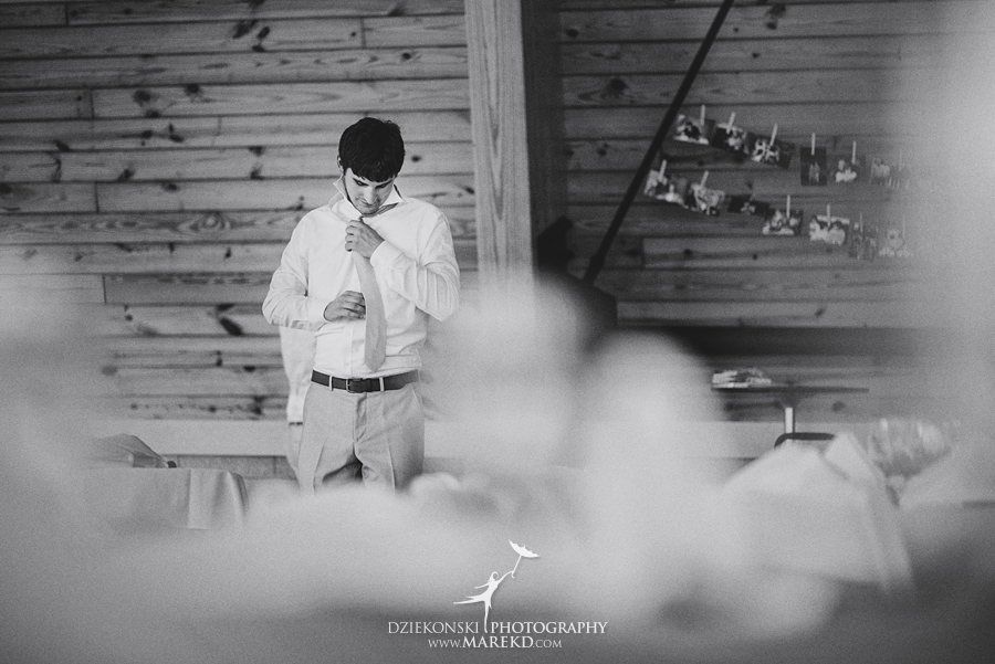 cristina cody wedding ceremony reception photographer michigan white lake outdoor nature water lake indian springs metropark07 - Cristina and Cody